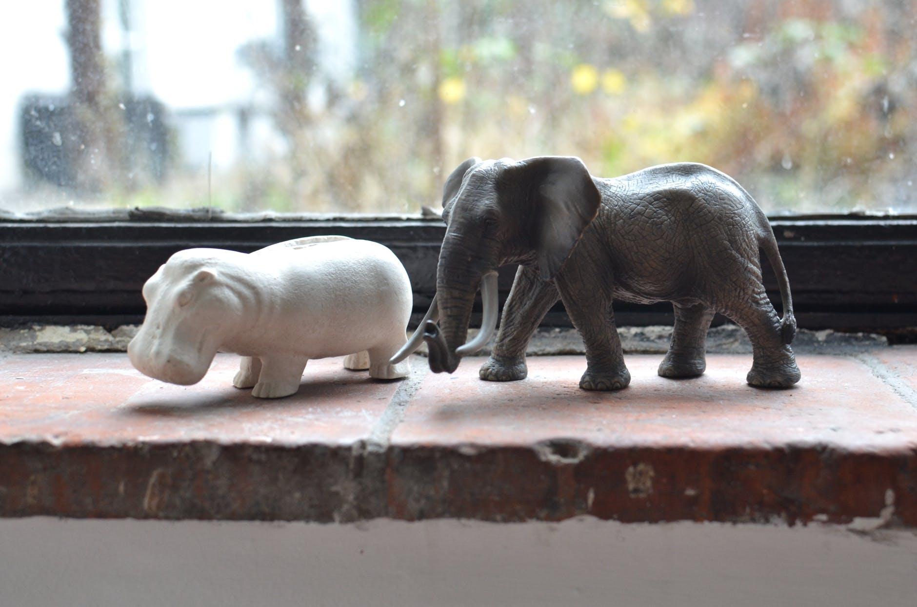 statuette of elephant and hippopotamus on windowsill